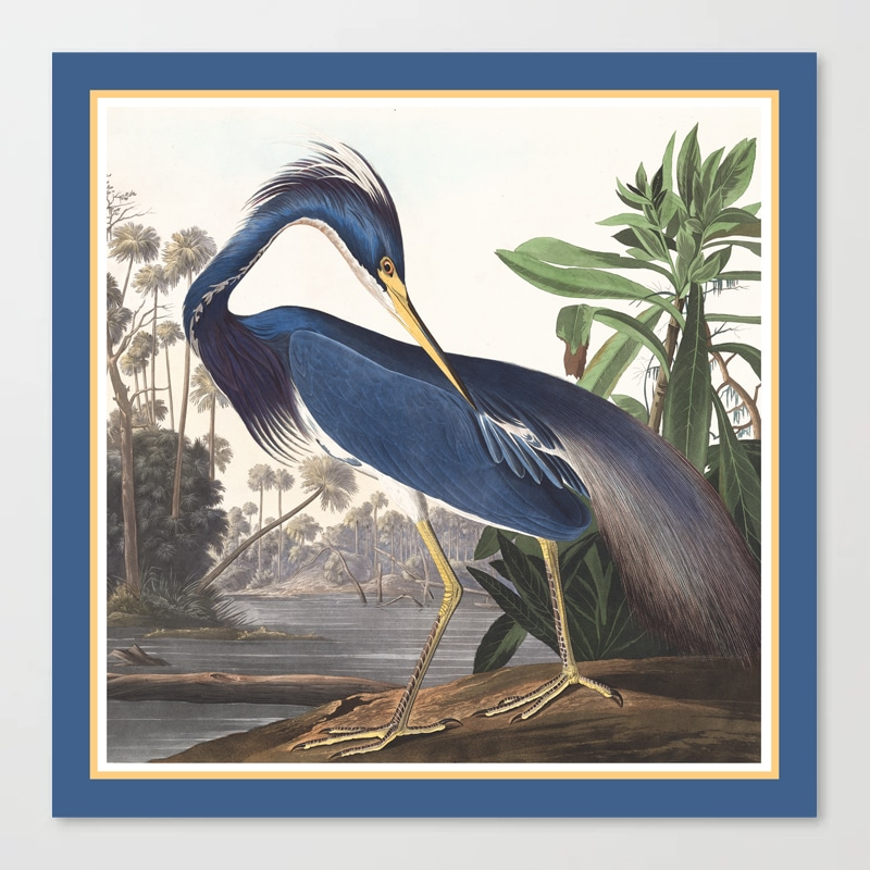 Louisiana Heron Bird Blue Yellow Painting Canvas Print